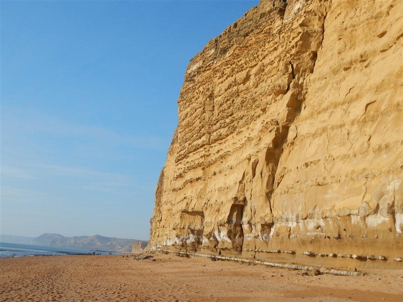 Cliffs at Burton Bradstock