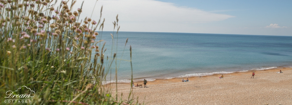 11 Best Beaches in Dorset Charmouth