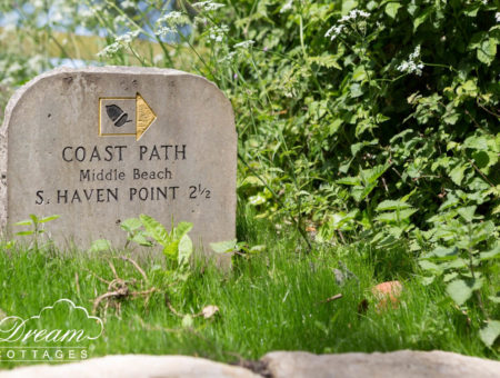 Dorset South West Coast Path near S. Haven Point