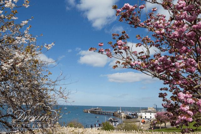Views of Swanage Pier