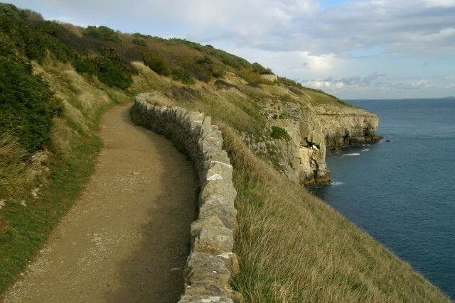Coastal path leading along the edge of Durlston Country Park